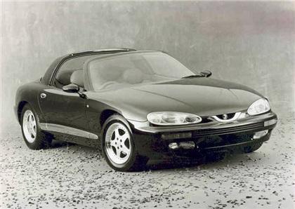 1991 Subaru Rioma