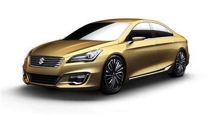 2013 Suzuki Authentics
