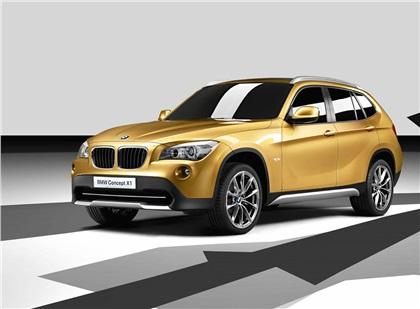 2008 BMW X1