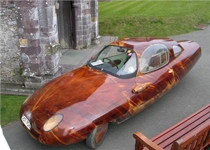 Tryane II: Автомобиль краснодеревщика