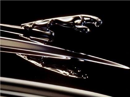Jaguar: Кошка на капоте